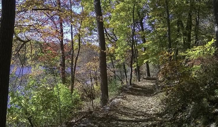 a path by lake waban