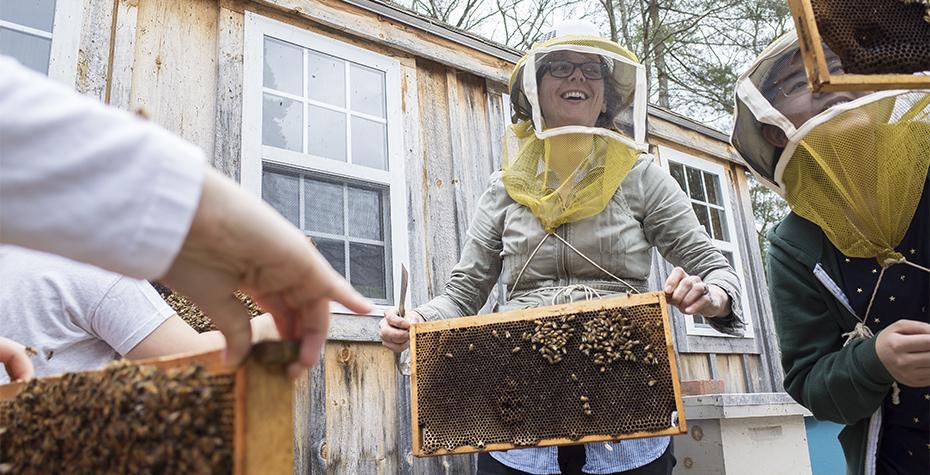 Wellesley Professor Heather Mattila near honey bee hives