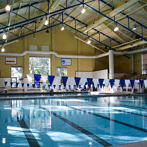Lanes in the compeition pool