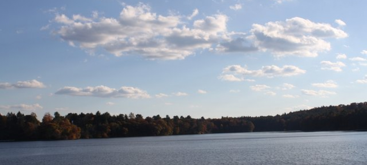 Photo of Lake Waban taken by Andrea Verdelli