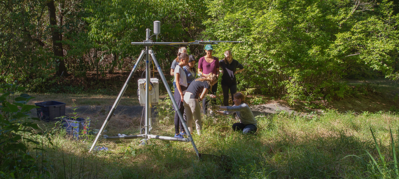 Prof. Jaclyn Hatala Matthes and students work with a tripod tower in the arboretum