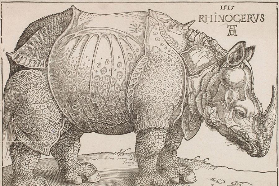 An image of Albrecht Durer's The Rhinoceros.