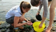 Kate Corcoran and fellow student collect water samples on shore