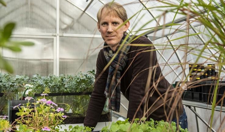 A male professor stands in a greenhouse