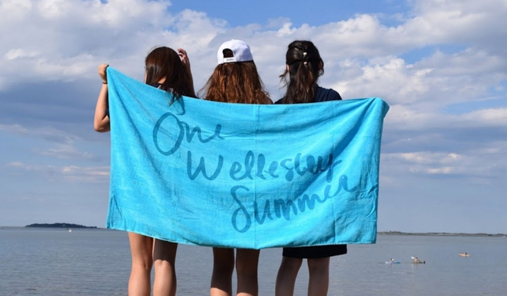 Participants in the One Wellesley Summer program enjoy a day trip to Plymouth, Mass.