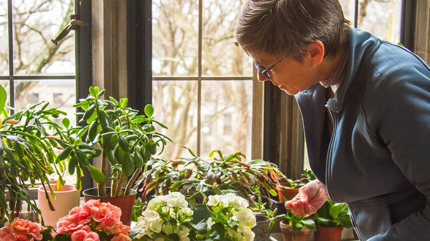 A professor looks at her plants