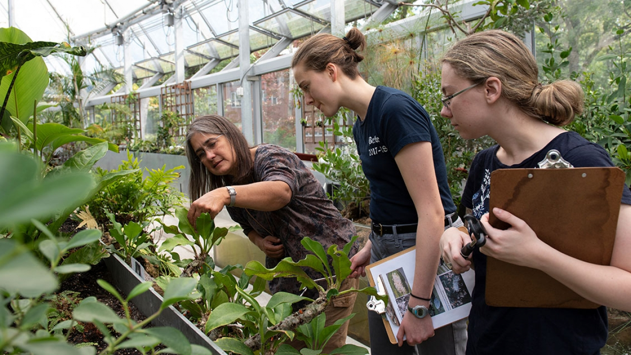The botanic gardens director works with students in global flora. They are holding notebooks.