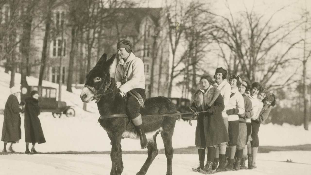 A student on a donkey pulls a group of students on skis at Wellesley College