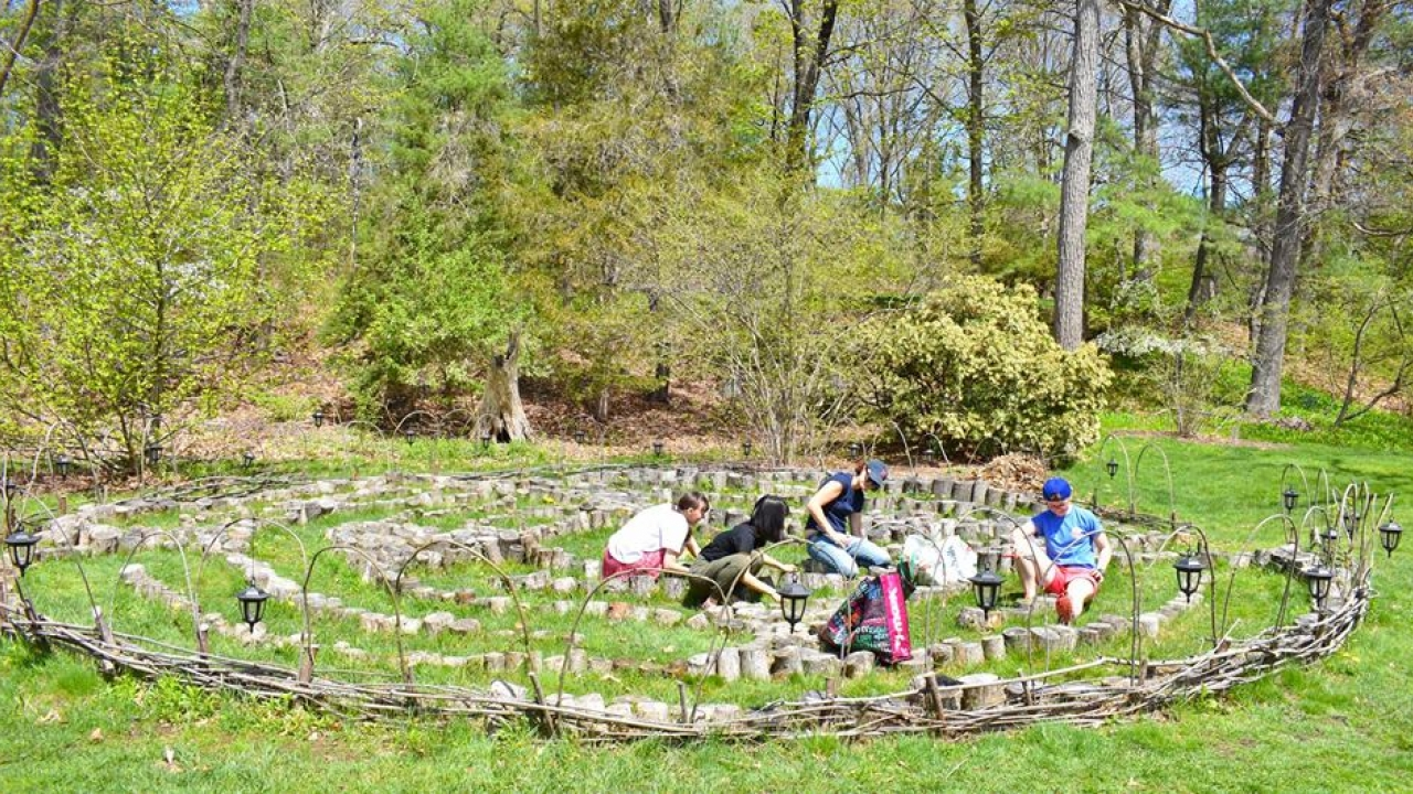 Students work to spruce up the labyrinth on campus.