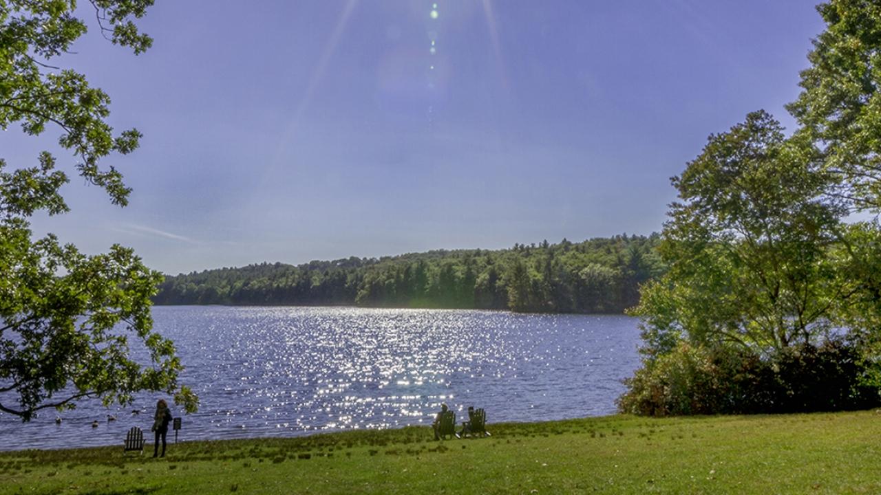 Lake Waban in spring.