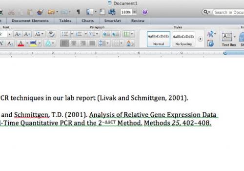 Screen capture of EndNote citation