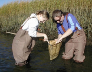 Students studying water sample in marshland