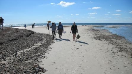 Students sampling on beach in Massachusetts